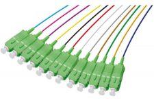 Pigtails 12 couleurs OS1
